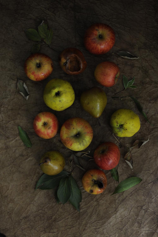 blog labelaure food stylist photographe culinaire empreinte carbone score carbone CO2 faible étiquette A+ pommes coings poires