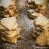 Douceurs à croquer n°1 à l'approche de Noël : les croustifondants aux cacahuètes