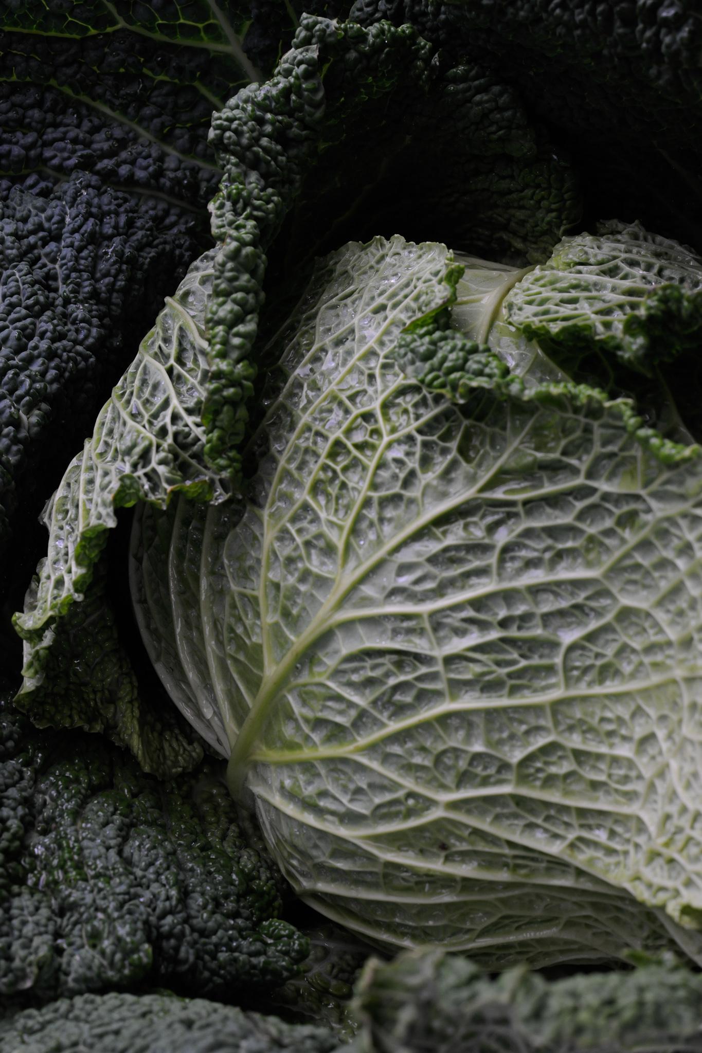 blog labelaure food stylist photographe culinaire empreinte carbone score carbone CO2 faible étiquette A chou