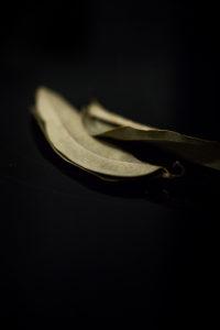 recette photographie culinaire auteure labelaure bouillons légumes épices maison barthès fait-maison feuilles de cannelier